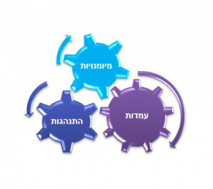 תהליך פיתוח ארגוני